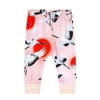 Molo pantaloni stampati